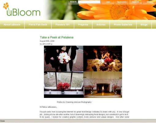 """Take a Peek at Petalena"" from the uBloom.com blog"