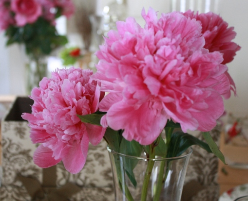 Pretty pink peonies at the studio