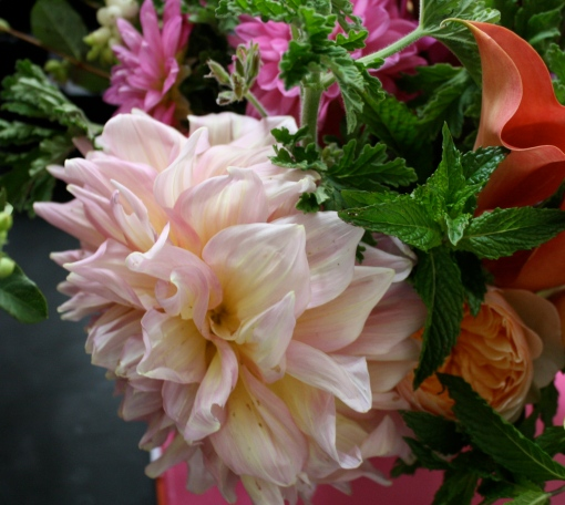 'Cafe au Lait' Dahlia with Mint Leaves