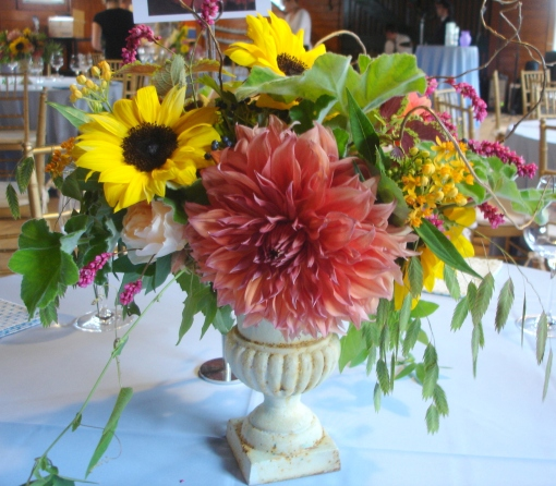 Salmon Dahlias with Sunflowers